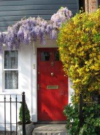 wisteria-cottage-1220001